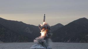 En odaterad nordkoreansk bild på en missil som avfyras från en ubåt.