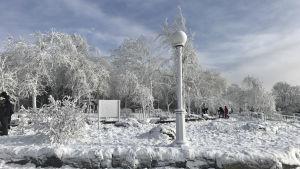 Frost i Niagara Falls i delstaten New York den 2 januari 2018