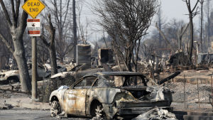 En totalförstörd bil i ett sotigt landskap i Kalifornien.