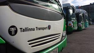 Bussar i rad på depå i Tallinn.