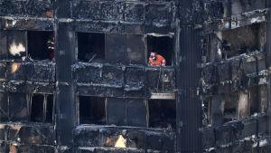 Polis och brandmän letar igenom byggnaden.