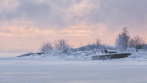 Kylmä pakkaspäivä Helsingissä