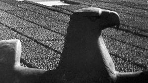 Saksan kotka paraatikentän yllä natsi-Saksan aikaisessa propagandafilmissä Tahdon voitto