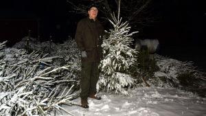 Kåre Pihlström poserar med en julgran.