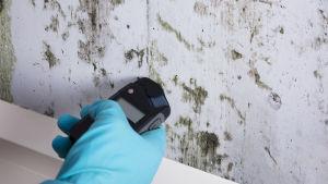 En hand håller i en fuktmätare vid en möglig vägg.