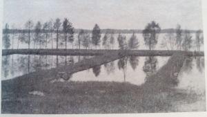 De gamla fiskodlingsbassängerna i Porla i Lojo.