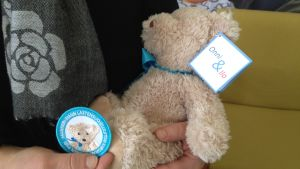 En person håller leksaksnallen Onni och Mannerheims barnskyddsförbundsmärke i famnen.