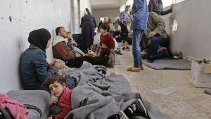 Civila syrier som evakuerats från rebellkontrollerade områden i östra Ghouta har hittat skydd i en skola i det regeringskontrollerade distriktet Adra utanför Damaskus.