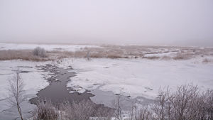 En bäck som rinner genom isen i Ruskis.
