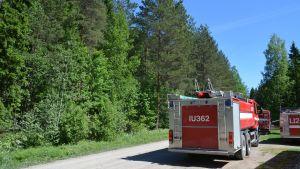 Brandbilar på Brännmalmen som vätnar på sin tur att komma fram på den smala skogsvägen.