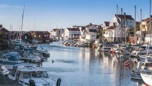 Vy över Saltön med båthamn och hus.