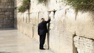 Donald Trump lägger sin hand på Klagomuren i Jerusalem
