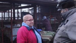 Irina Subbotkina driver en stor hundgård utanför Viborg. Hon har gett sjuka hundar sprutor med antibiotika.