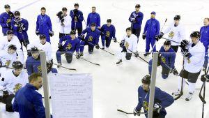 Finlands hockeyherrar på träning.