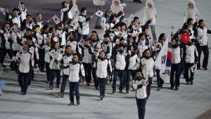 Sydkorea marscherade ensamt ännu vid OS i Sotji 2014.