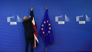 Storbritanniens och EU:s flaggor.