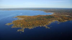 Platsen för det planerade kärnkraftverket i Pyhäjoki