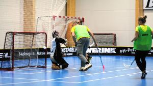 Målvakten Filip Björklöf får ge sig i stadsfullmäktiges mål.