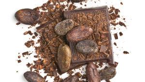 Mörk choklad och kakaobönor.