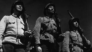Okänd soldat, regi Edvin Laine
