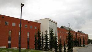Vasa Universitet