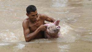 Stormen Agatha härjar i El Salvador