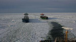 Svenska isbrytaren Frej assisterar fartyg i Kvarken.