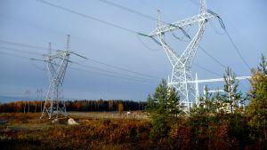 Kraftledningarna från vindkraftsparkerna i Kristinestad kommer att dras till Fingrids nya elstation
