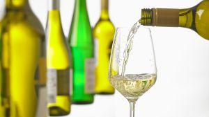 Vitvin hälls upp i ett glas, en rad vitvinsflaskor i bakgrunden.