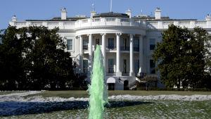 Vita huset den 17 mars 2017. Vattnet i fontänen är grönt för att fira r St. Patrick's Day.
