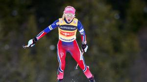 Therese Johaug överlägsen i Lillehammer 2015.