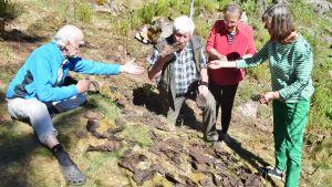 Calle Fogelholm, Berndt Gottberg, Lena Selén och Elisabeth Fogelholm granskar gamla uppgrävda skor i Svenviken i Ingå.