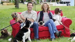 Steve Leonard, Kate Humble ja koiria dokumentissa Koirat lähikuvassa