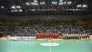 Danmarks herrar vann OS-guld i handboll i Rio de Janeiro.