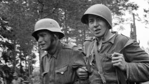 Jatkosodassa yli 15.000 miestä joutui psykiatriseen hoitoon. Sodan jälkeen sen kauhut jatkoivat elämää perheiden sisällä.