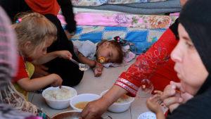 Flyktingar från Hawija, nära Kirkuk i flyktinglägret Debaka, utanför Erbil, Irak 22.10.2016