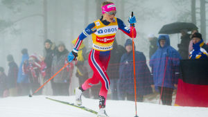 Therese Johaug ryckte direkt i Holmenkollens tremil.
