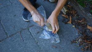 Hapansilakkapurkin avaaminen muovipussissa