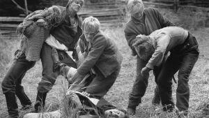 aleksis kivi, seitsemän veljestä, jouko turkka, tv-sarja, pojat nujuaa pellolla, 1989,