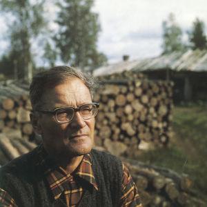 Kirjailija Kalle Päätalo tukkipuupinojen edessä