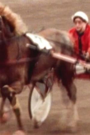 Göta Karlstedt kör trav med hästen Lotta, videostill, 1975