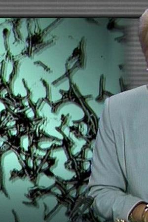 Kristina Wallendorff läser upp en nyhet om ebola i TV-Nytt 12.5.1995