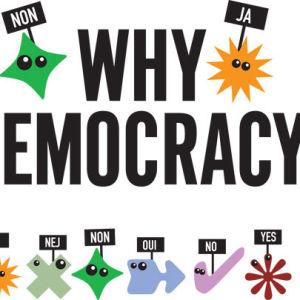 """teksi jossa lukee """"why democracy"""""""