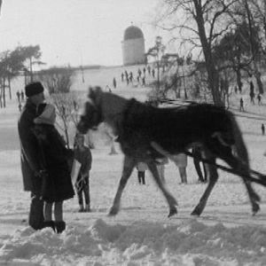 Laskiaisen viettoa Kaivopuistossa Helsingissä 1964