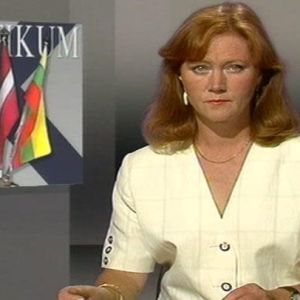Tv-nytt, 1991