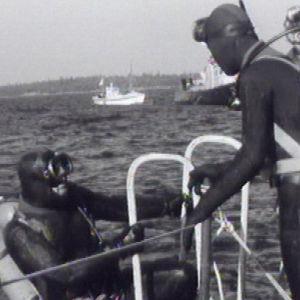 Sukeltajat jatkavat pelastustöitä uponneella Nostaja-ruoppaajalla Pietarsaaren edustalla 7.9.1972