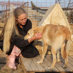 nainen silittää vaaleata keskikokoista koiraa Glinan koiratarhalla Romaniassa
