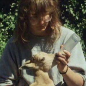 Mary-Ann Vane-Tempest juottaa kilille maitoa dokumentissa Korkeasaari 100 vuotta (1989)