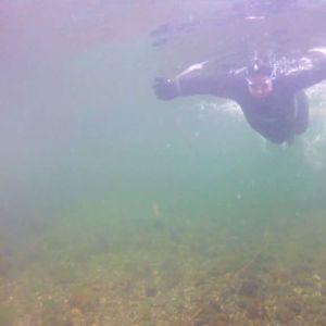 Elisabeth dyker längs stigen.