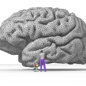 aivot ja ihminen kirjapinon kanssa